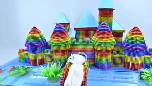 小伙子网购回来40000颗巴克球,给仓鼠制作城堡,太有趣了!