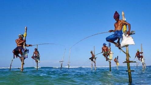最佛系的钓鱼方式,不需要任何鱼饵,大鱼就自动上钩!