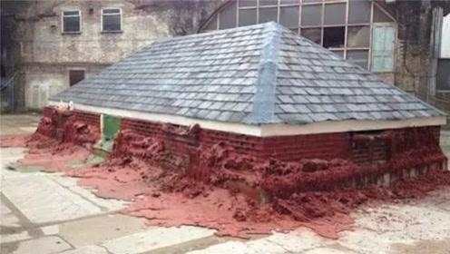 世界上寿命最短的房子,只有30天的保质期,这种房子还有人敢住吗?