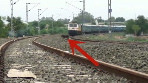 一只野猪站在铁轨上,远处一辆火车开了过来,下秒太不可思议
