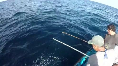 海钓,只要是发现鱼群,就会有好的收获