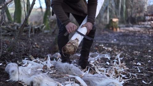 荒郊野外,砍几棵树点一堆火,这是要过原始人生活啊
