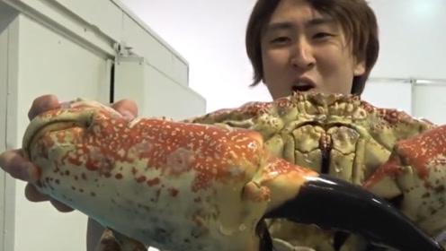 10000元的巨型螃蟹,老外忍痛斥巨资买下,掰开壳后却傻眼了
