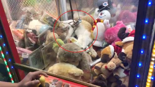 猫咪躺在娃娃机里睡觉,下一秒,大家憋住别笑!