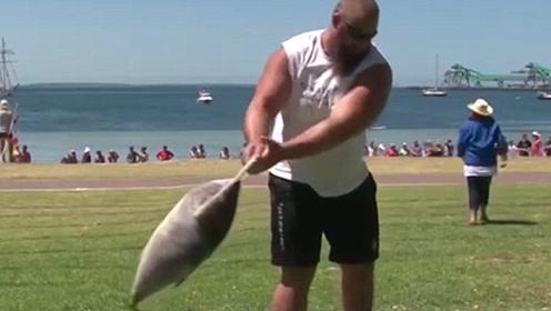 国外扔金枪鱼世锦赛,10公斤大鱼谁扔的远就是冠军,奖金5万元