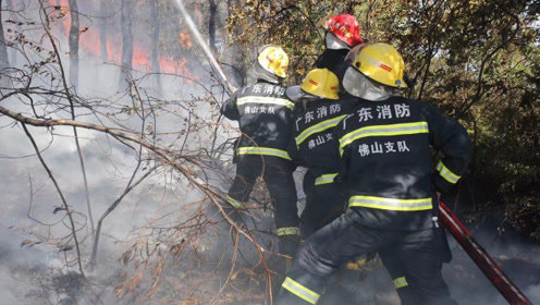 佛山高明山火已得到控制 3000余人担负看守和清理任务