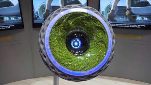 老外打造超环保轮胎,内壁被植入活的苔藓,能进行光合作用!