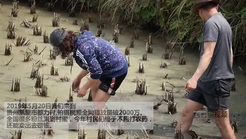 这个村庄小龙虾泛滥成灾!一夜之间就干灭绝了!