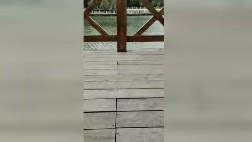 木桩上发现个小门,推开一看,真想住一晚!