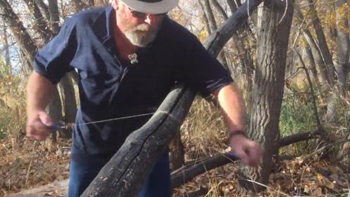 2毫米的线也能当电锯用?老外挑战用这条线砍树,网友:能成功吗