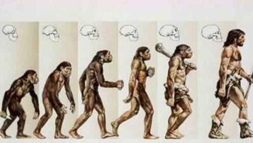 """地球上""""第一个人类""""是如何诞生的?科学家终于找出答案不可思议"""