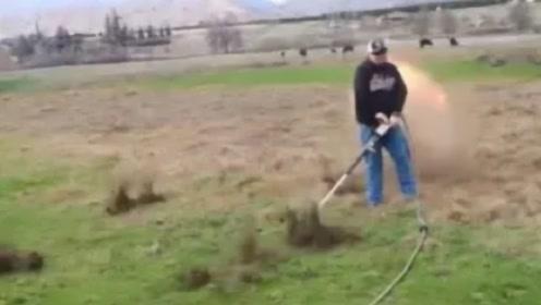 加拿大老鼠泛滥成灾,农民将空气炮捅进老鼠洞,下一秒直接投降!