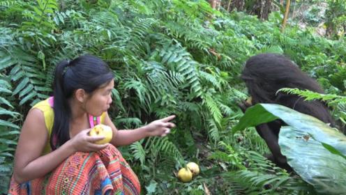 """荒野生存:美女深山爬树摘下大黄梨,和""""野人""""分享吃"""