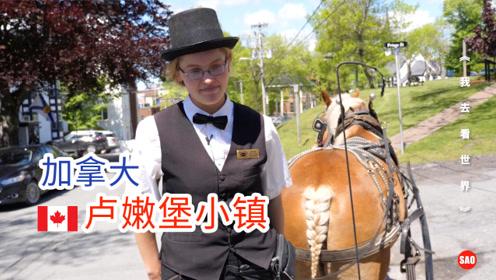 加拿大105集:坐上马车,游逛卢嫩堡小镇