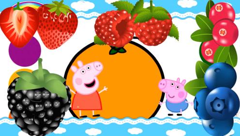 快乐英语水果蔬菜美味佳肴英语单词学习第三课书适优阅儿童英语