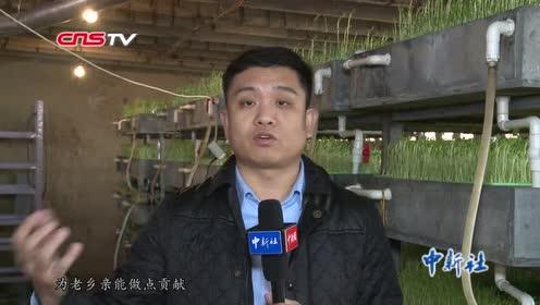"""河北退伍军人研发""""鱼菜共生""""系统免费为贫困户提供设施"""