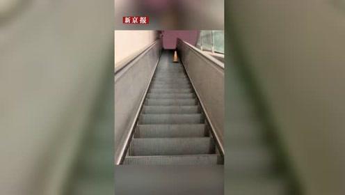 郑州火车站电梯闲置8年 城管:没有一个单位承认建设和养护电梯