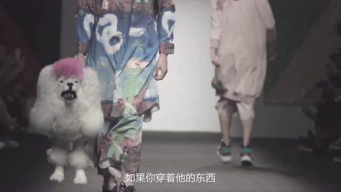 TASHA:助中国设计师一臂之力