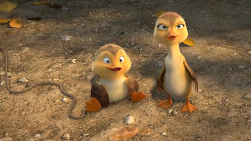 《妈妈咪鸭》推广曲《数鸭子》MV 经典儿歌重唱秒回童年