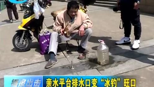 """亲水平台排水口变""""冰钓""""旺口"""