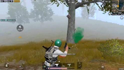 刺激战场 大雾天冲锋枪12杀