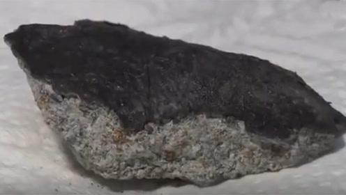 一块有46亿年历史的陨石坠落女子家 把屋顶撞出洞