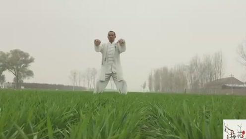 二十四式太极拳简化全集,标准规范,国家体育总局推广,宋淑鑫
