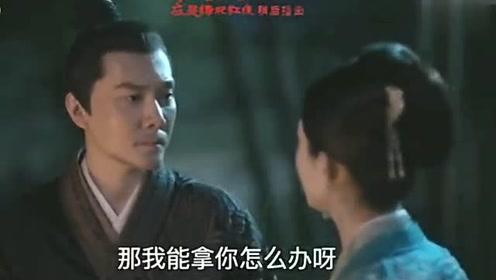 知否:顾廷烨问盛明兰,再选一次,是不是就嫁给元若了?