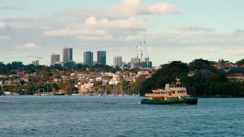 感受悉尼风情,与澳洲动物亲密接触——澳洲之行第一章