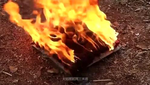 老外用10000根火柴烤蛇,点燃的瞬间,真是太刺激了!