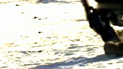 十分罕见的猎鹰捕食,飞在空中瞄准猎物,俯冲下去捕捉!