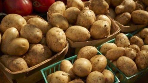 才发现,保存土豆这么简单!放一年都不发芽不腐烂,早学早受益