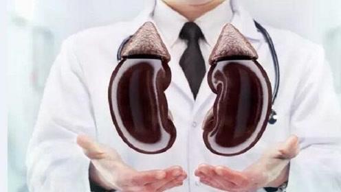 这4类食物会对肾脏造成伤害,还容易导致肥胖