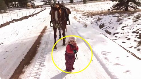 爸爸让2岁女儿溜马,不料接下来马的反应,老爸都暖哭了