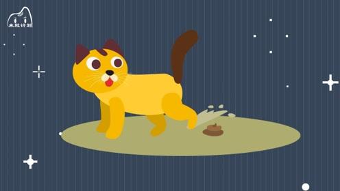 猫为什么会埋大便?