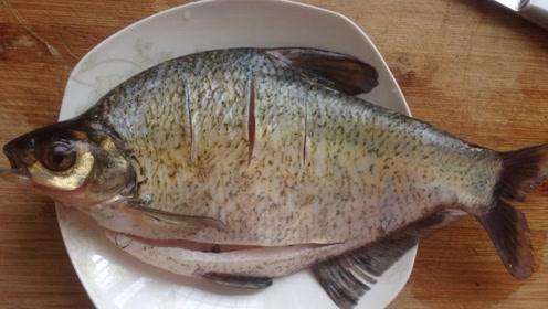 """菜市场买鱼,如何分别是不是""""死鱼""""?挑鱼是个技术活,别犯4个错误"""