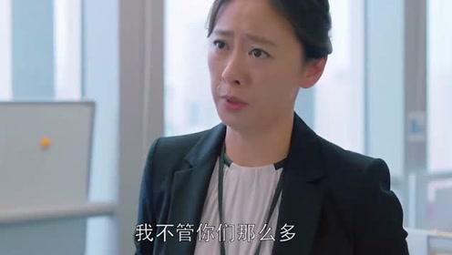 欢乐颂:关关帮同事忙,出了错误同事全甩锅给她,老板把她一顿骂