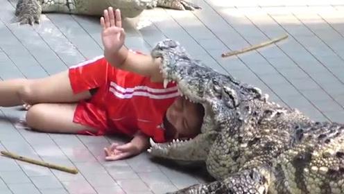 男子用仿真鳄鱼头整蛊游客,结果弄巧成拙,场面瞬间难以控制!
