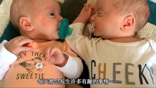 双胞胎在客厅玩耍,爸妈笑惨了,双胞胎照镜子摔倒