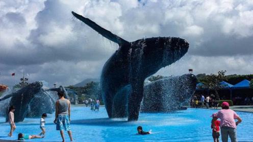 鲸鱼表演结束后没有奖励,它生气了观众就得倒霉啦