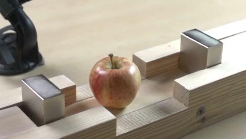 钕磁铁的磁性有多强?看看这瞬间消失的苹果,心里一阵后怕