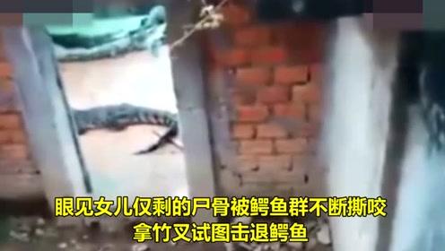 2岁女童遭鳄鱼分食只剩头颅,其原因令人沉默!