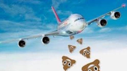 飞机上的粪便都去哪里了,会砸到地面上的人吗?看完涨知识了!