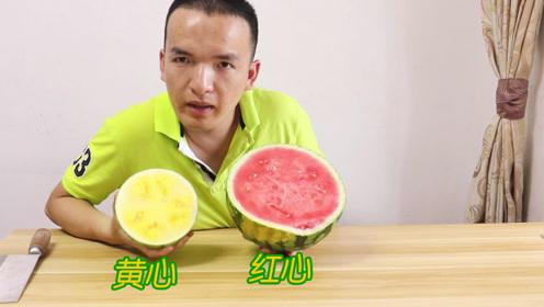 试吃58块钱的黄心西瓜和19.8红心西瓜,到底哪个西瓜更好吃