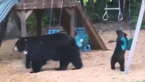 熊妈妈带着2只熊宝宝后院玩秋千单杆 屋主:不可思议