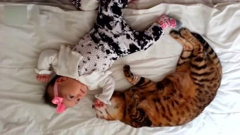 孩子和宠物一起成长,看着它们一起开心的玩耍,感觉十分幸福