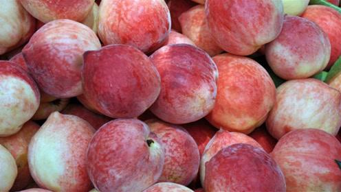 桃子也分公母?公桃子更加甜是真的吗?看完可别乱买了