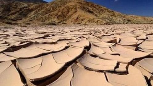 世界最干燥的地区,500年没下雨,突降3场雨后生物全灭绝了