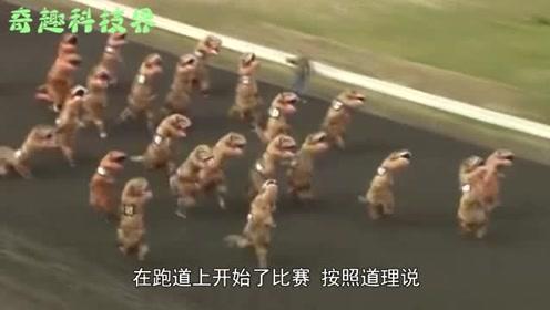 """国外惊现一群""""霸王龙""""赛跑,看到奔跑过程,笑喷了!"""