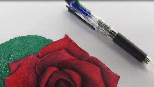 现女友太傲娇,整日发脾气要玫瑰花,理工男无奈只能开始画画